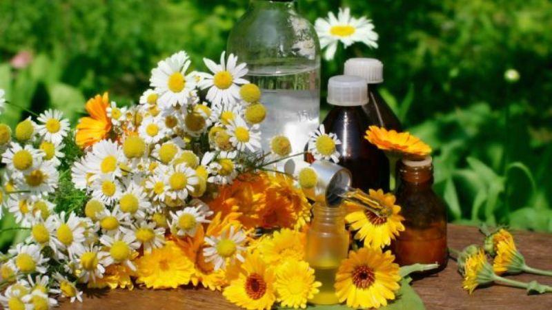 травы для лечения колита кишечника
