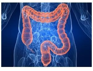 симптомы болезни толстой кишки и лечение