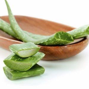 Способы лечения простатита с помощью алоэ: и рецепты